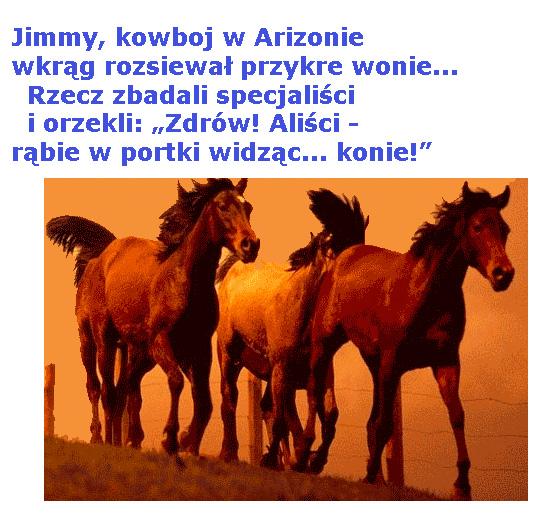 LIMERYKI